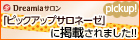 ds_pickup_140x40.jpg